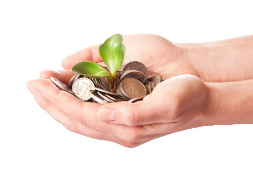 Successful Startups Stick to a Strategy: The 5-Step Process to Landing a Seed Investment